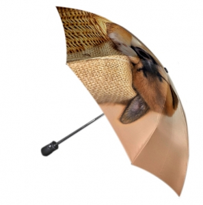 Зонт Gilux G3F 22FALT LUX (расцветка 201)