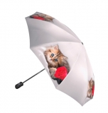 Зонт Gilux G3F 22FALT LUX (расцветка 304)